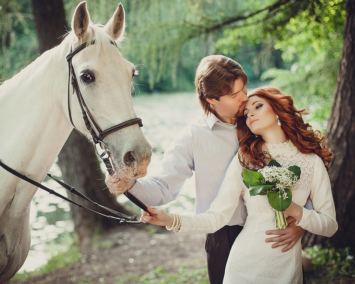 Фото свадебная фотосессия с лошадьми