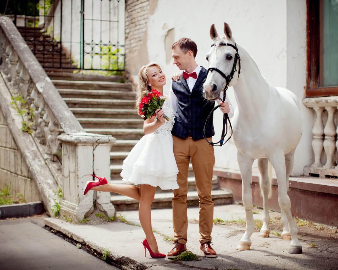 Фото свадьбы с конем